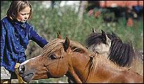 Mädchen streichelt ein Pony