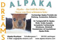 Logo Alpaka Dreams