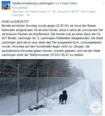 Facebook-Meldung ausgesetzter Hund