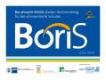 Logo Boris